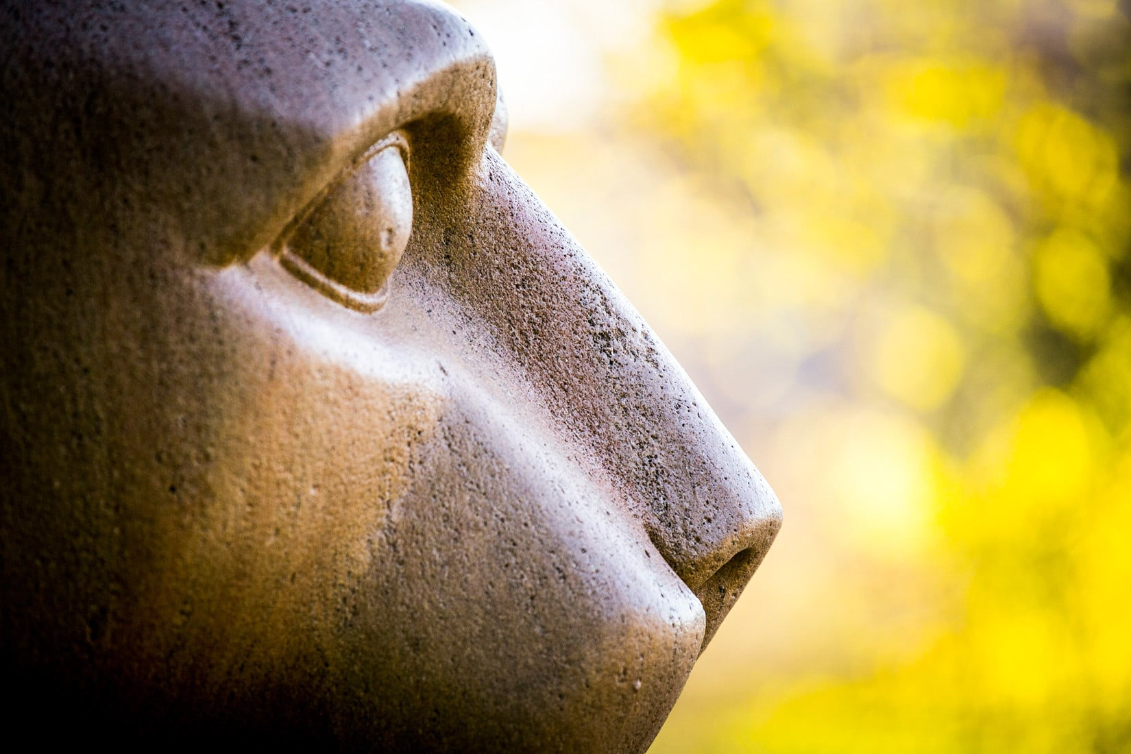 For the Future that We Wait, by Bob Lambert Photography (Nittany Lion, State College, PA)