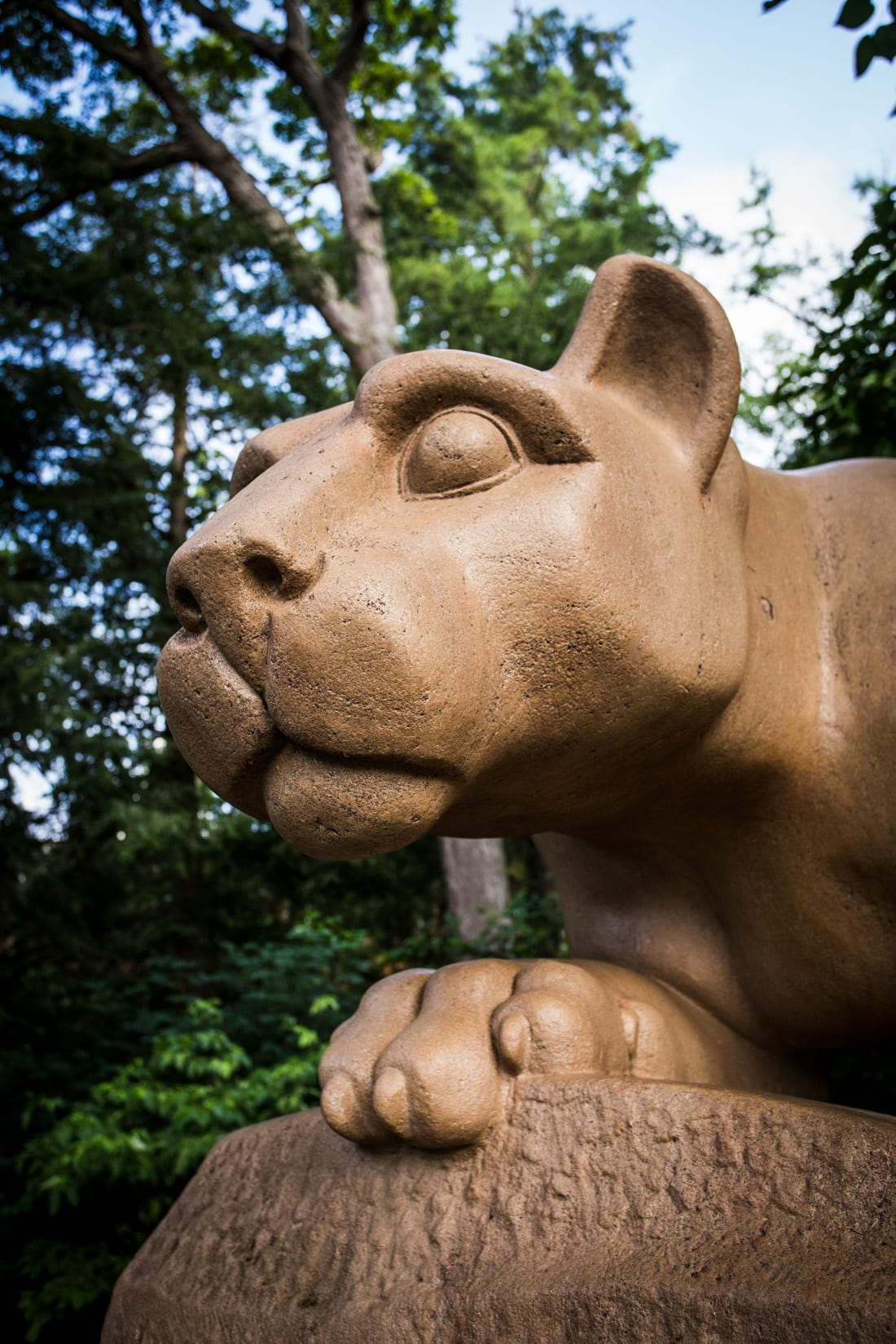 Hail to the Lion, by Bob Lambert Photography (Nittany Lion, State College, PA)